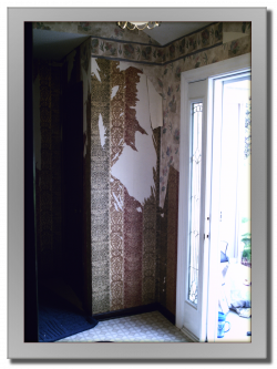 Atlas Coatings & Construction Wallpaper Stripping & Painting